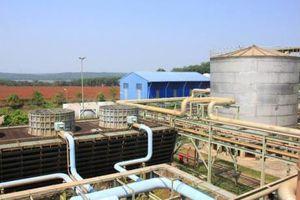 Nhà máy nhiên liệu sinh học Bình Phước sắp vận hành trở lại