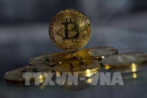 Sắp diễn tập toàn quốc về phòng chống mã độc đào tiền ảo