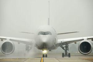 Cận cảnh máy bay Airbus A350 thứ 12 đặc biệt của Vietnam Airlines