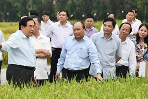 'Thủ tướng đối thoại nông dân như đất hạn gặp mưa'