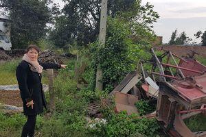 Đắk Lắk: Hàng rào dâm bụt 'vô duyên' khiến chủ đất bị bác đơn khởi kiện