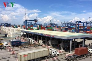 Nghịch lý logistics nhìn ở cụm cảng Cái Mép – Thị Vải