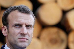 Tổng thống Pháp bị phản bác vì nói Nga-Thổ 'tan đàn xẻ nghé' ở Syria