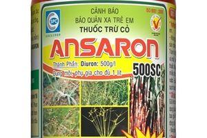 Ansaron 500SC trừ cỏ cho ruộng mía