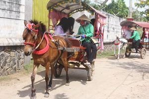 Những nữ xà ích đón xuân trên yên ngựa miền Tây