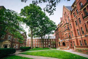 Những khóa học online miễn phí của trường đại học hàng đầu nước Mỹ