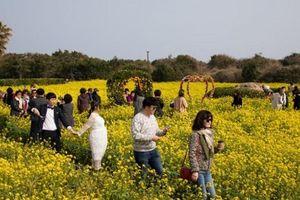 Chính phủ Hàn Quốc lên chiến dịch du lịch từ trào lưu Hallyu
