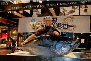 5 trải nghiệm đáng nhớ khi đến Wakayama, Nhật Bản