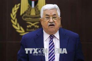 Chuyên gia lo ngại chia rẽ trong nội bộ Palestine