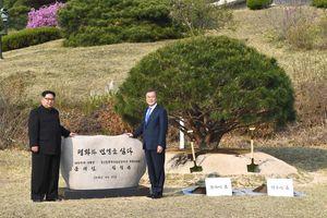 Kim Jong Un: Hướng tới thống nhất với tốc độ ngựa vạn lý
