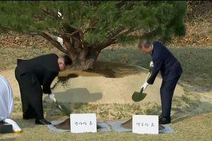 Hai nhà lãnh đạo Hàn-Triều vun trồng 'hòa bình và thịnh vượng'