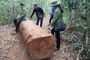 Công an điều tra vụ 40 lâm tặc mang súng cướp tang vật
