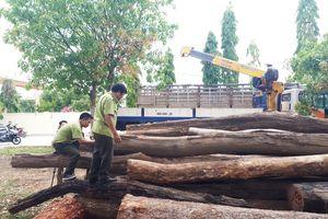 Vụ đường dây gỗ lậu tại Tây Nguyên: Bắt khẩn cấp đàn em Phan Hữu Phượng
