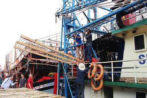 Ngư dân Quảng Nam hăng hái vươn khơi ngày đầu năm