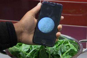 Phát triển thiết bị phát hiện nhanh vi khuẩn trong thực phẩm