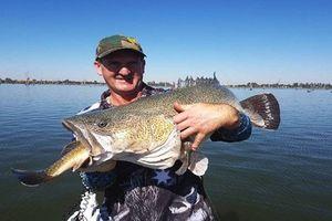 Ngoạn mục khoảnh khắc cần thủ câu được cá trong cá