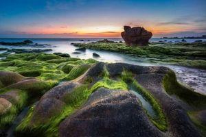 Đẹp nao lòng bãi đá Cổ Thạch mùa rêu