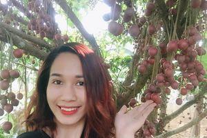 ĐẴ MẮT với CÂY DÂU DA ĐẤT sai trĩu quả ở Phú Thọ, ai nhìn thấy cũng thèm ứa nước miếng