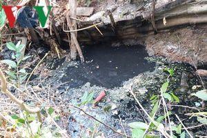 Người dân Tiền Giang 'kêu cứu' vì dòng kênh tắc nghẽn, ô nhiễm