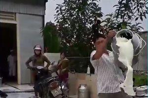 Dân đổ sữa vì giá nhập thấp, Giám đốc Nhà máy sữa Nghệ An lên tiếng
