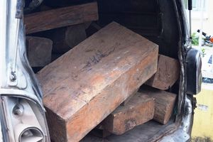 CSGT liên tục phát hiện xe chở gỗ lậu 'vi vu' trên Quốc lộ