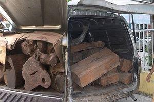 Liên tục phát hiện các xe chở gỗ lim, trắc lậu qua Thừa Thiên Huế