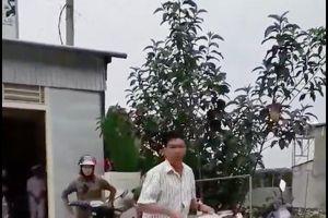 Vụ bức xúc đổ sữa tươi lênh láng: Người dân đã quay lại bán sữa cho Nhà máy