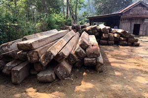 Vụ phá rừng quy mô lớn ở Quảng Bình: Kỷ luật hàng loạt cán bộ