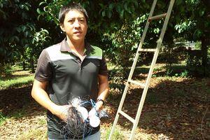 Đáng nể người sáng chế ra hệ thống chống trộm vườn cây trái