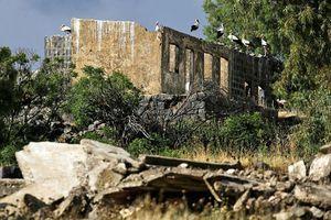 Syria tuyên bố bắn hạ hàng chục tên lửa Israel, tấn công trả đũa vào Golan
