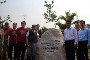 Công viên Hòa Bình sẽ thành địa điểm nổi tiếng về hoa anh đào