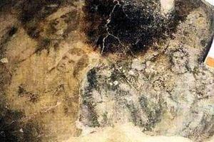 Những khuôn mặt ma quái ẩn hiện trên sàn nhà thị trấn Tây Ban Nha