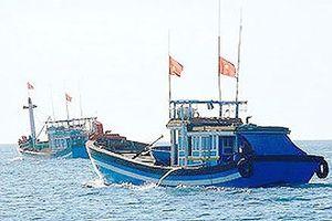 Khẩn trương ứng dụng công nghệ vệ tinh theo dõi tàu cá trên biển