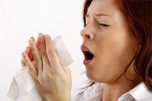 Top thực phẩm chữa viêm mũi dị ứng hiệu quả