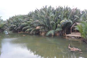 Du lịch sinh thái Trà Nhiêu, Quảng Nam bị bỏ quên?