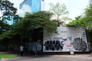 Công ty góp 30% vốn vào khu đất 5.000 m2 ở Sài Gòn chỉ có 3 nhân viên