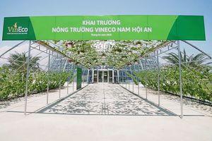 Khám phá nông nghiệp hàng đầu thế giới bên trong Vineco Nam Hội An