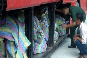 Phát hiện xe khách từ Campuchia về Việt Nam chở đầy gỗ lậu