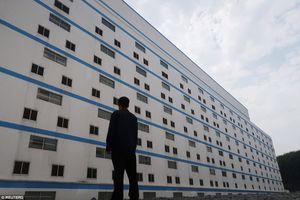 'Khách sạn lợn' ở Trung Quốc