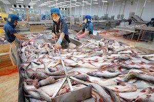 Mỹ áp mức thuế chống phá giá rất cao đối với cá tra-basa Việt Nam