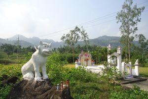 Chuyện ly kỳ về tục thờ thần Bạch Hổ độc đáo ở Trà Bồng