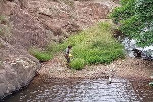 Chưa thể tiếp cận thi thể nam phượt thủ tử vong trong rừng Phan Dũng