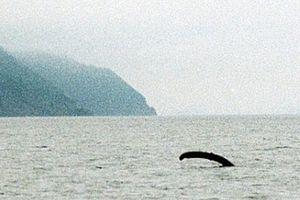 Bí ẩn quái vật hồ Loch Ness sắp có lời giải