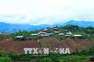 Cần giải quyết đúng quy định khi thu hồi đất của 40 hộ dân tại Tu Tra, Lâm Đồng