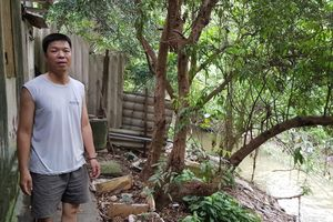 Sống khổ vì đất bị 'treo' giữa Hà Nội suốt gần hai thập kỷ