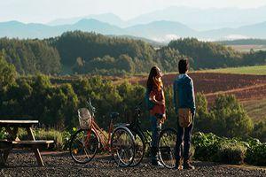 Nhắm mắt thấy mùa hè – chuyện tình đầy chất thơ ghi dấu ấn trong Điện ảnh trẻ Việt Nam