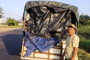 Bình Định: Điều tra làm rõ 3 tấn da bò bốc mùi hôi thối