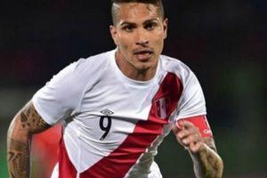 Chủ tịch Liên đoàn bóng đá Peru 'chống lưng' cho Paolo Guerrero