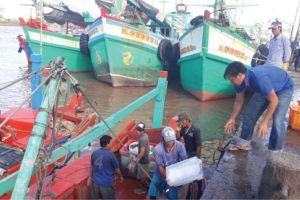 Cà Mau: Tuyển lao động rồi... bán làm ngư phủ