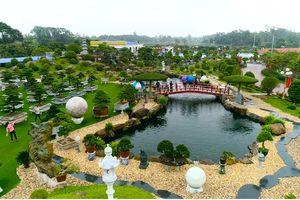 Trung tâm Thương mại và Du lịch Dũng Tân: Nơi tôn vinh giá trị Việt, của người Việt, đẳng cấp quốc tế